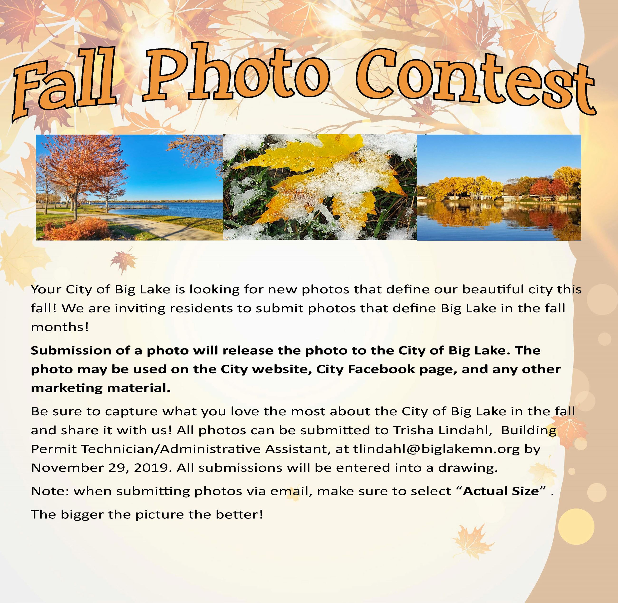 Fall Photo Contest Flyer